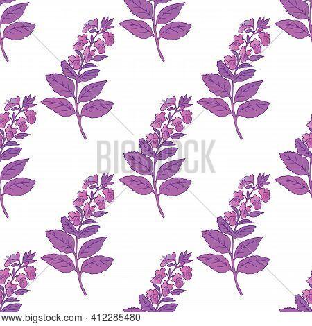 Vector Graphic Illustration Basilic Plant Seamless Pattern-03