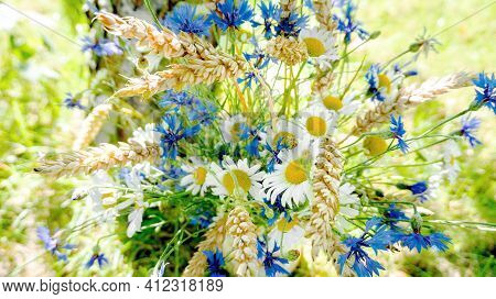 Cute Simple Bouquet Of Wildflowers On A Background Of Birch Bark. A Bouquet Of Cornflowers, Chamomil
