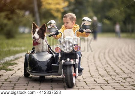caucasian little boy  driving dog in sidecar of a motorcycle replica outdoor in a park