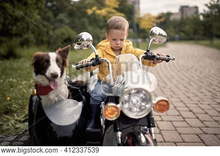 little caucasian boy driving a dog in sidecar of electrical toy motorcycle,