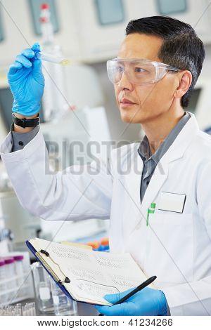 Male Scientist Working In Laboratory