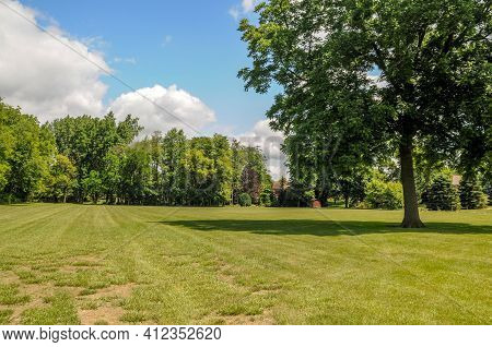 Open Grass Field With Trees And Houses In A Forest In The Background Under A Blue And Cumulus Cloud