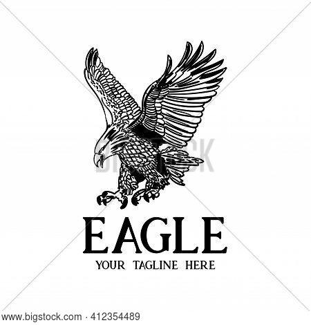 Eagle Animal Bird Illustration Design Vector. Hand Drawn Eagle Design Vector