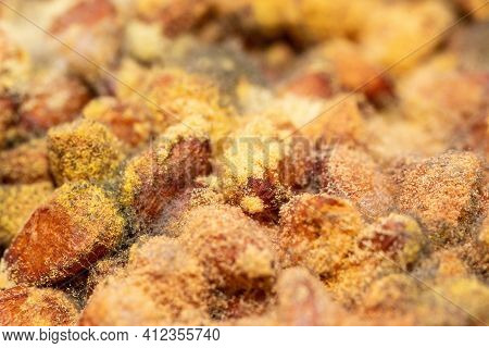 The Background Is Mold On Pine Nuts, Bacteria Have Grown From Different Plant Spores Into Round Ball