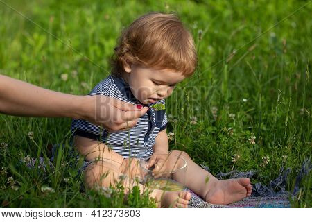Summer Ration, Childcare. Good Morning On The Farm. Mothers Hand Feeding Baby With A Spoon. Cute Lit