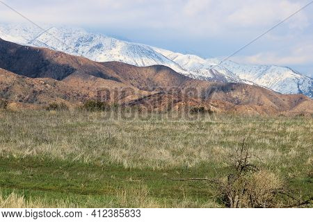 Lush Grasslands On A Rural Field Besides Rugged Mountains Covered With Snow Taken At A Prairie In Th