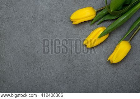 Yellow Tulips On Grey Background Copy Space. Spring, Easter Concept. Flat Lay, Top View, Copy Space.