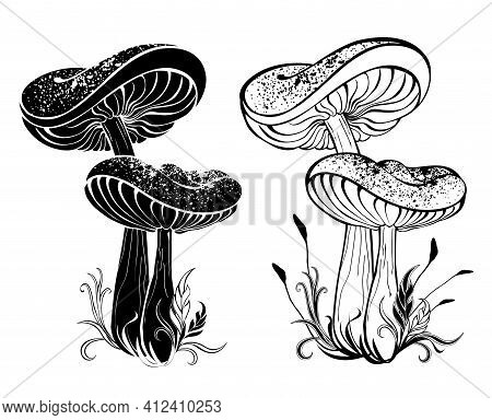 Two Monochrome, Contour, Silhouette, Mature Mushrooms With Large Caps On White Background. Stencil.