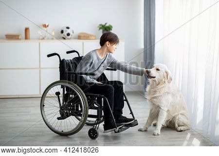 Full Length Of Handicapped Teenage Boy In Wheelchair Petting His Dog At Home. Animal-assisted Therap