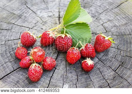 Fresh Strawberries. Berry With Copy Space. Ripe Red Strawberry Berry On Wooden Background.