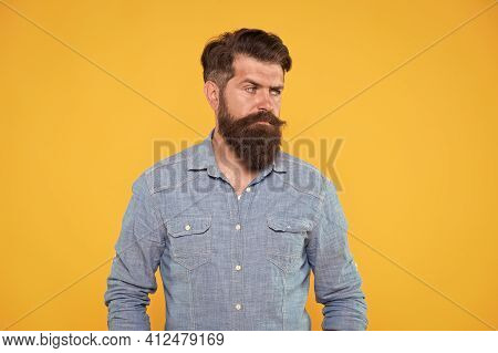 Denim Style. Serious Hipster Yellow Background. Bearded Man Wear Hipster Beard. Hipster With Brutal