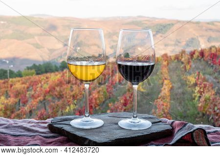 Glasses Of Portuguese Red Dry And White Sweet Wine, Produced In Douro Valley And Old Terraced Vineya