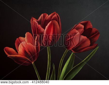 Oil Painting Realistic Style Texture Painting Flower Still Life Painting Art Painted Color Image Wal