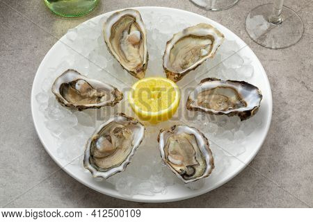 Plate with fresh raw open Pacific oysters, Japanese oyster on ice as appetizer or snack