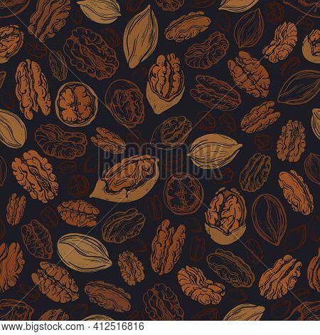 Pecan Brown Nuts Seamless Pattern. Vector Texture Illustration Of Dry Seeds On Black Background. Vin