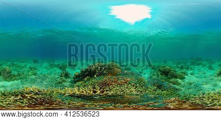 Beautiful Underwater World With Coral Reef And Tropical Fishes. Colourful Tropical Coral Reef. Phili