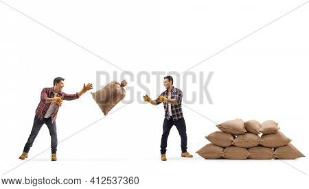 Farmers throwing a burlap sack and making a pile of sacks isolated on white background