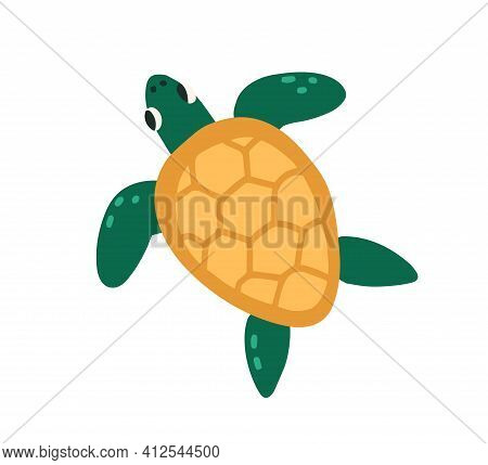 Cute Green Turtle With Shell Isolated On White Background. Top View Of Funny Tortoise. Colored Flat