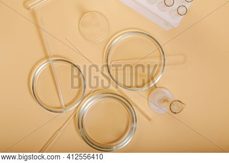 Laboratory Glassware On Color Beige Table. Chemical Laboratory Research. Empty Transparent Clean Sci