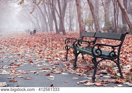 Closeup Perspective View On Iron Wooden Bench In City Park Alley With Trees And Dead Autumn Leaves O