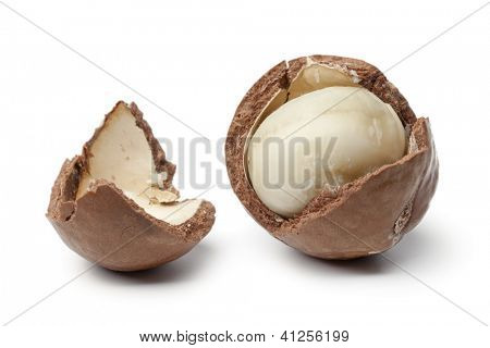 Macadamia nut in a broken shell on white background