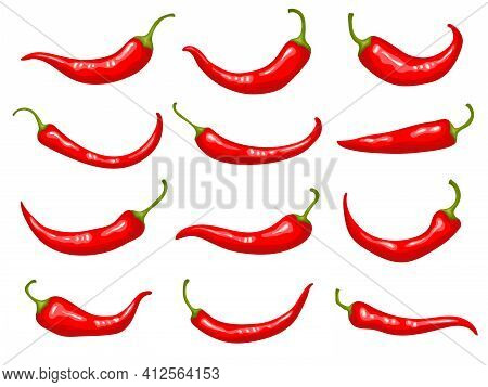 Red Peppers. Hot Delicious Natural Mexican Traditional Product Cooking Ingredients Natural For Prepa