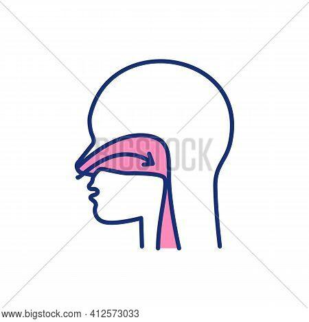 Nose Breathing Rgb Color Icon. Sleep Apnea. Releasing Nitric Oxide. Taking Deep Breaths. Widening Bl