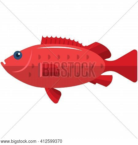 Sea Bass Vector Illustration Fishing Icon Isolated On White