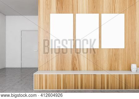 Modern Interior. Canvas Gallery Posters On Wooden Wall Above Drawer With Vase And Books, Minimalist