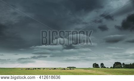 Time-lapse Of Summer Countryside Rural Meadow Landscape Under Scenic Dramatic Sky With Fluffy Clouds