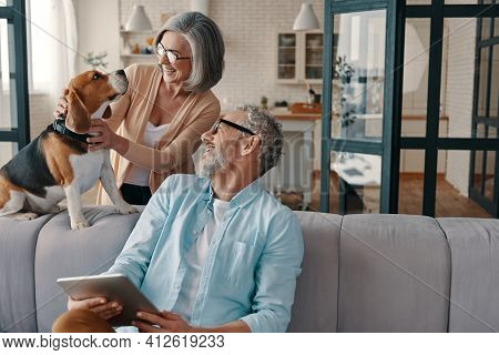 Happy Senior Couple In Casual Clothing Smiling And Taking Care Of Their Dog While Bonding Together A