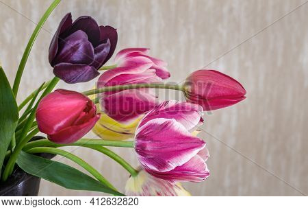 A Bouquet Of Beautiful Red, Pink And Yellow Tulips In A Ceramic Vase. Presented In Close-up. Front V