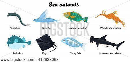 Undersea Inhabitants. Endangered Species. Sea Animals Set