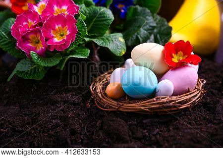 Easter Colorful Eggs In The Garden. Gardening Tools And Flowers On The Garden Terrace. Primrose Of D