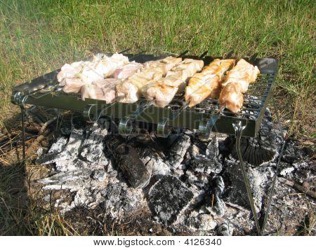 Barbecue In Progress