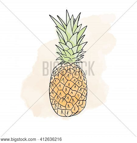 Tropical Watercolor Digital Pineapple. Illustration Of Isolated On A White Background