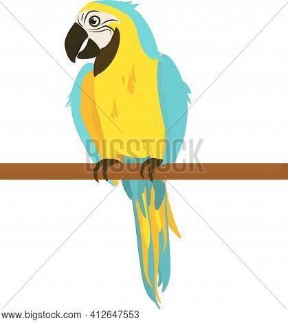Vector Illustration Of A Tropical Macaw In Yellow And Blue Coloring, Sitting On A Branch. Isolated O