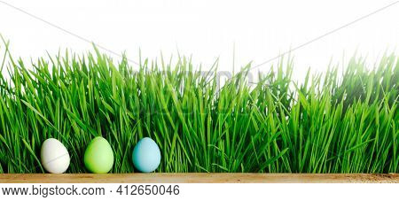 Row of Easter Eggs in fresh green grass isolated on white background