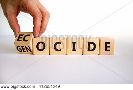 Ecocide Or Genocide Symbol. Businessman Turns A Cube And Changes The Word Genocide To Ecocide. Beaut