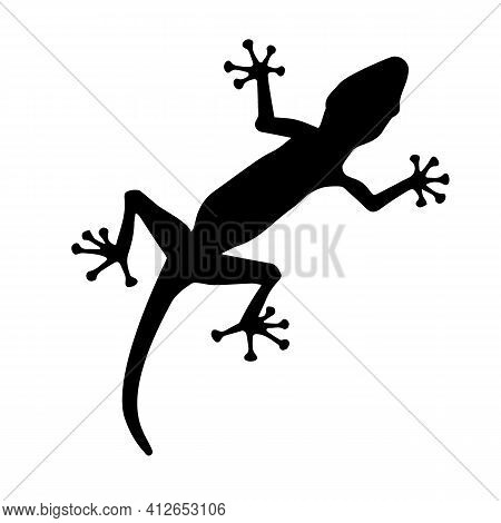Black Silhouette Creeping Up Of Lizard On White Background. Vector Illustration