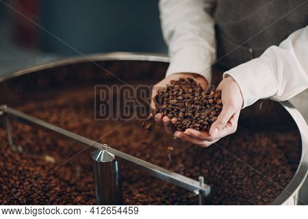Coffee Cooling In Roaster Machine At Coffee Roasting Process. Young Woman Worker Hold Roasted Brown
