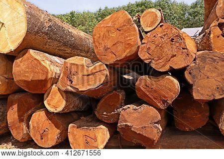 Pile Of Wooden Logs Stacked Together On Top Of Each Other. Stack Of Firewood Close Up.