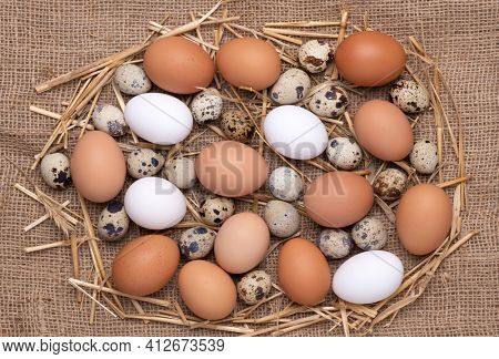 Fresh chicken brown and white eggs and quail eggs on burlap background, top view