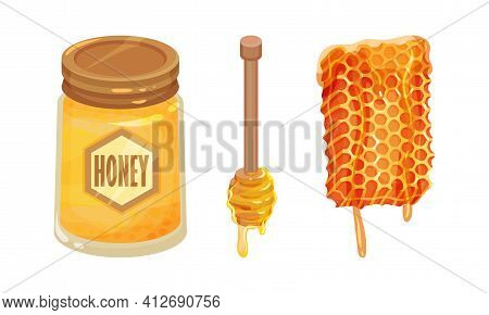 Glass Jar With Sugary Honey Fluid And Honeycomb Vector Set