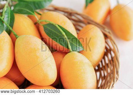 Closeup Big Size Fresh Ripe Organic Sweet Yellow Marian Plum Or Plum Mango In Wood Basket On Table.