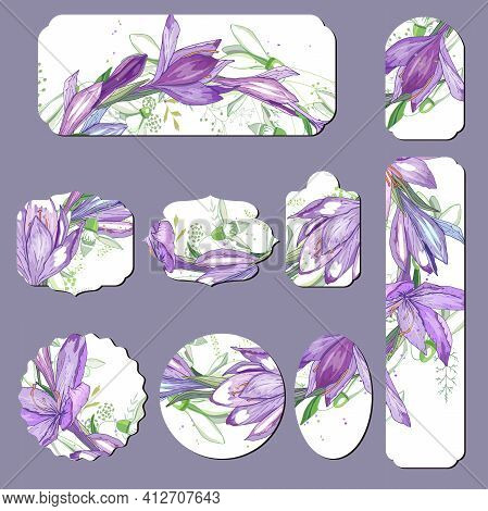 Set With Different Floral Cards With Spring Violet Crocuses. Illustration Can Be Used For Festive An