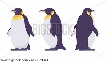 Penguin Set, Cute Large Aquatic Flightless Seabird With Yellow Neck. Water Life, Ornithology, Birdwa