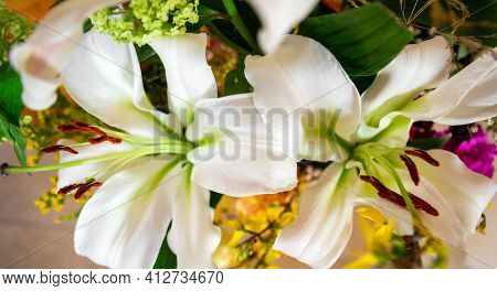 Cutout Of Two White Lilies From A Bouquet