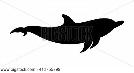 Dolphin graphic icon. Swimming dolphin sign isolated on white background. Dolphin as sea life symbol. Vector illustration