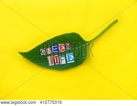 Green Life Headline. Words From Paper Letters On Nature Green Leaf On Yellow Background. Headline On